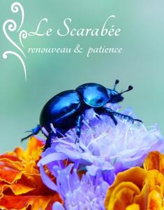 le-scarabee-symbole-magique-de-renouveau-et-de-patience